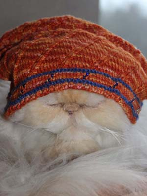 Bundle up. It's cold out there. Photo by Cheryl Hannah.